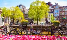 Štiridnevno potovanje v deželo tulipanov. 260 EUR.
