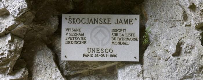 Obiščite ćudoviti kraški svet in Škocjanske jame, ki se nahajajo nedaleč stran od Divače. S prostornostjo dvoran in slikovitostjo podzemne soteske imajo posebno...