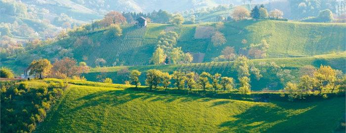 Odhod avtobusa in vožnja v smeri Bistrice ob Sotli do Kumrovca, najbolj poznane zagorske vasi, kjer lahko spoznamo zapuščino hrvaškega Zagorja od konca 19. stoletja.