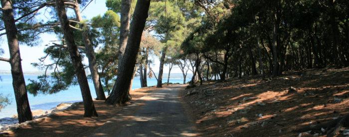 Pustite se zapeljati v raj! V objem blage mediteranske klime, kjer uspeva 680 vrst avtohtonih in eksotičnih rastlin. Otoki so dom številnim vrstam ptic.
