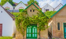 Odkrijte južno Madžarsko ter madžarski melos in temperament. 2 dni, 118 EUR (gurmanska večerja).