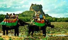 Šri Lanka - otok, kjer najdemo prav vse. Različna verstva, nasmejane ljudi, pester živalski svet, planote s plantažami čaja, sanjske plaže, starodavno kulturo ...