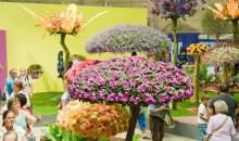 Kompas Celje Vas tradicionalno vabi na ogled mednarodnega sejma Cvetja in vrtnarske tehnike, vzorčnih vrtov in vrhunskih vrtnarij!