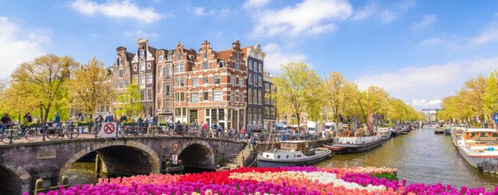 Za vrtnarje ali ljubitelje rož in vrtnarstva: s strokovnim vodenjem bo začetek aprilska odlična sprostitev za oči in uživanje na Nizozemskem.